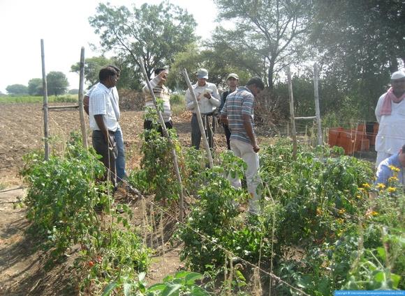 international development enterprises india - 580×425