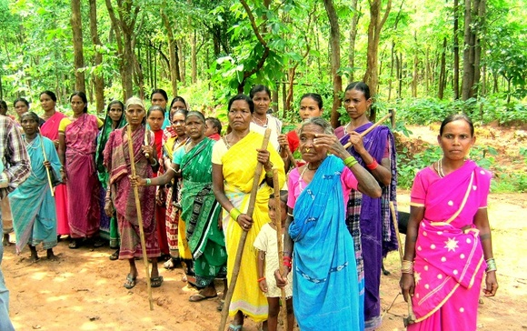 Forest Protection By SHG Leaders- AJSA India-Orissa-Bolangir