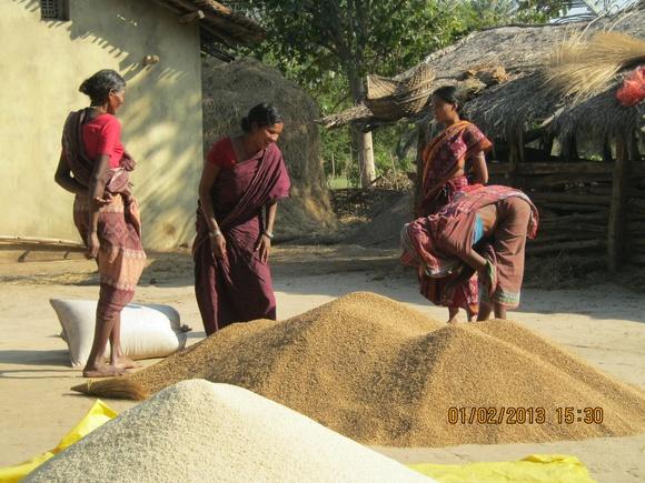 Grain Bank-Collection (1)