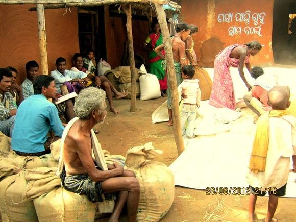 Grain Bank manged by communities-AJSA Orissa,India-Bolangir (5)