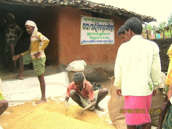 Grain Bank manged by communities-AJSA Orissa,India-Bolangir (1)