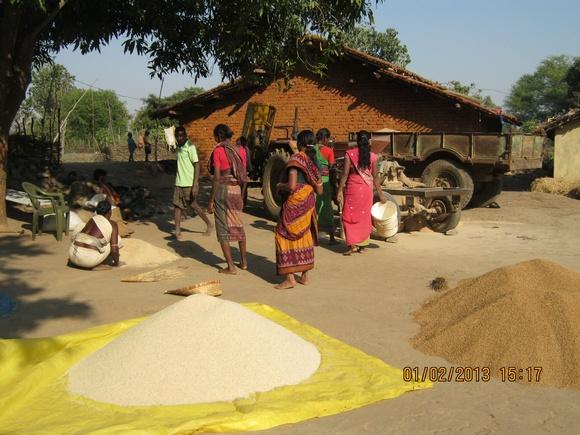Grain Bank-Collection (2)