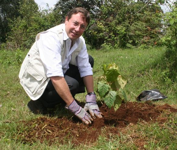 From an Environmental Program to a World Organization?