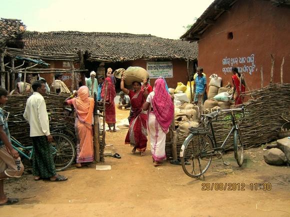 Grain Bank manged by communities-AJSA Orissa,India-Bolangir (4)