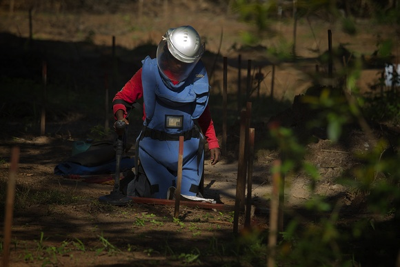DDG demining